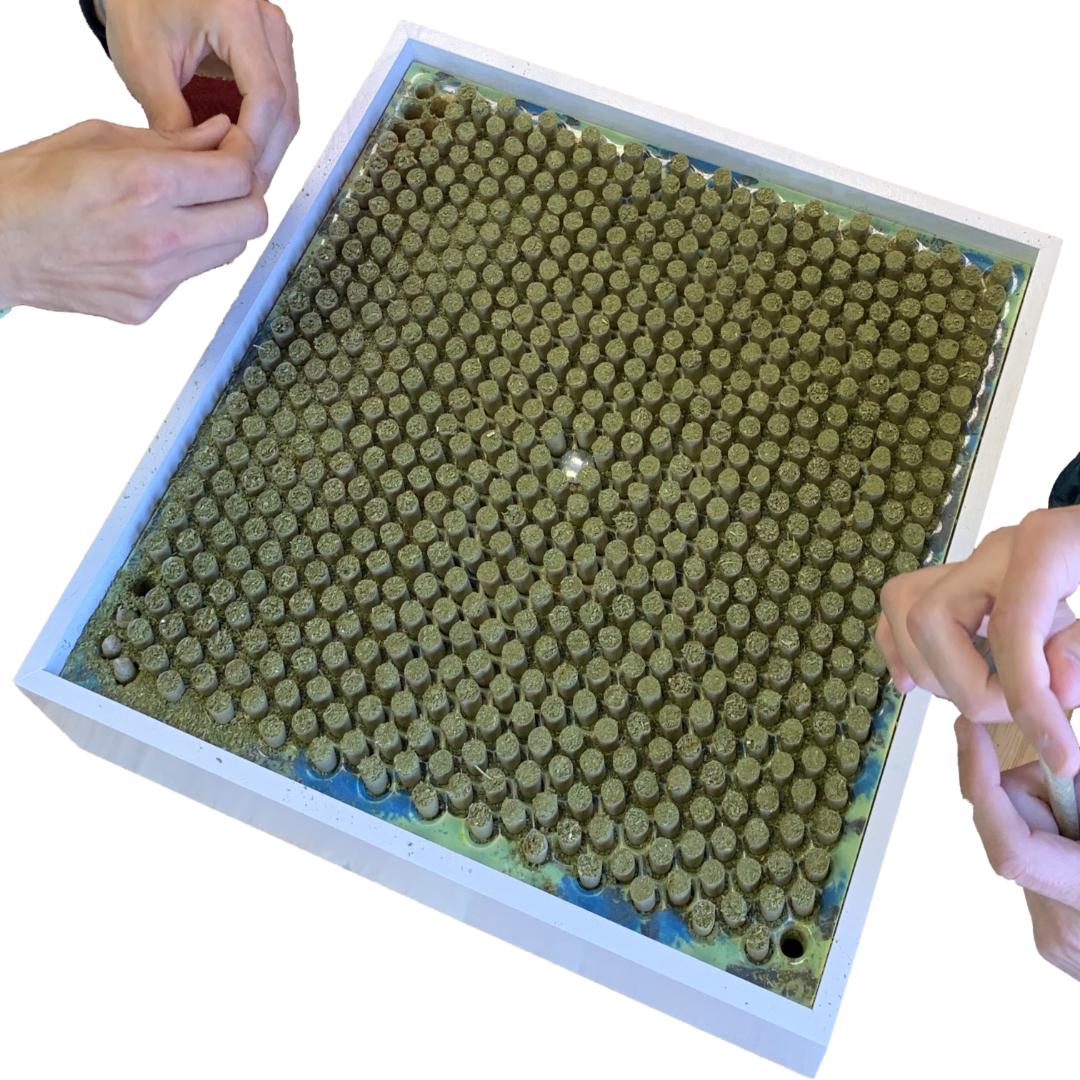 Doob Cube Cone Plate